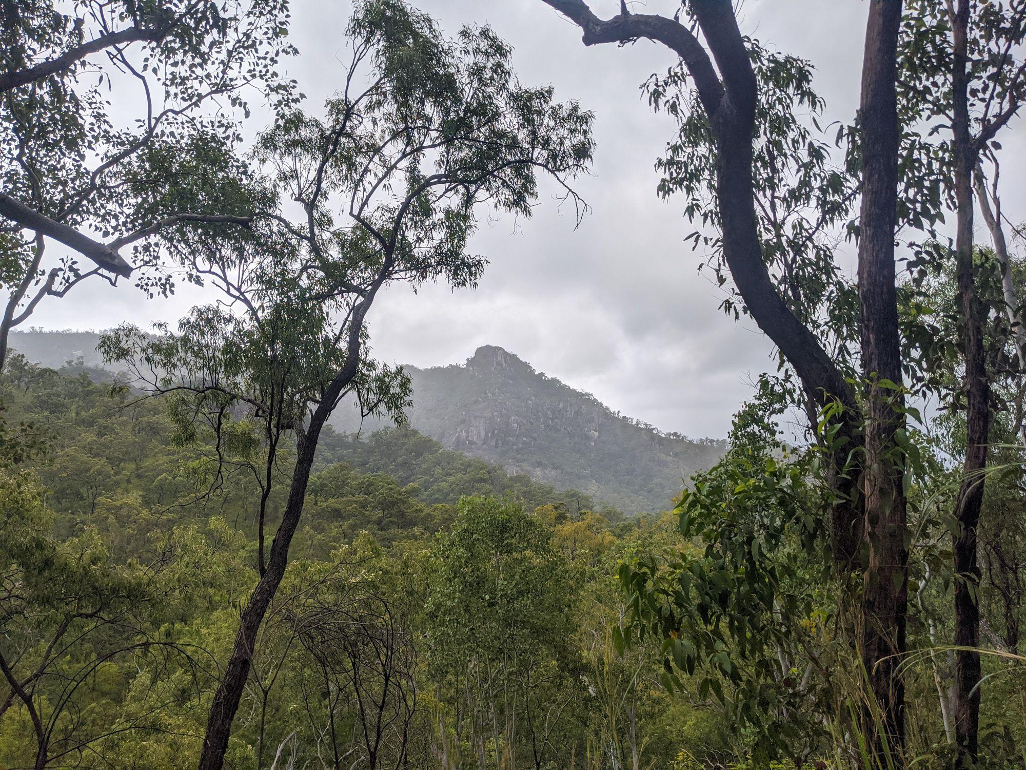 disaster creek ridge view