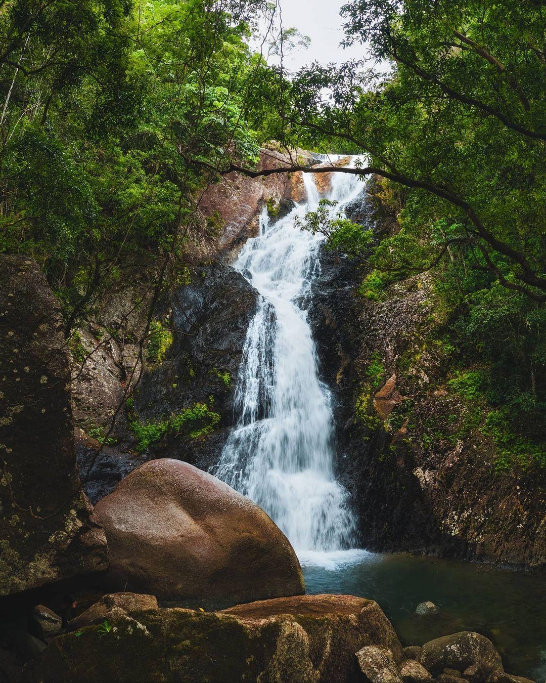 false falls reubennutt