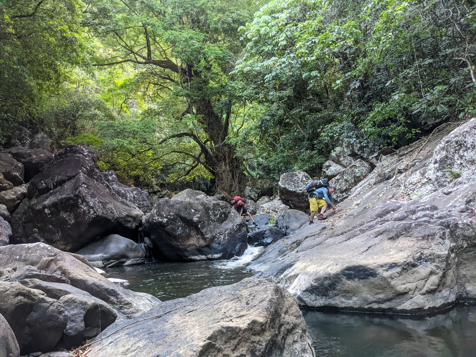 flagstone creek rock hop
