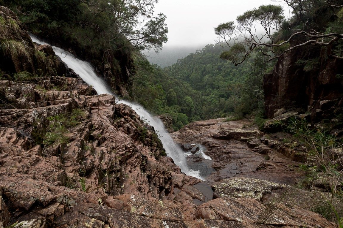 Crystal Falls - The best half-day hike near Townsville, Queensland
