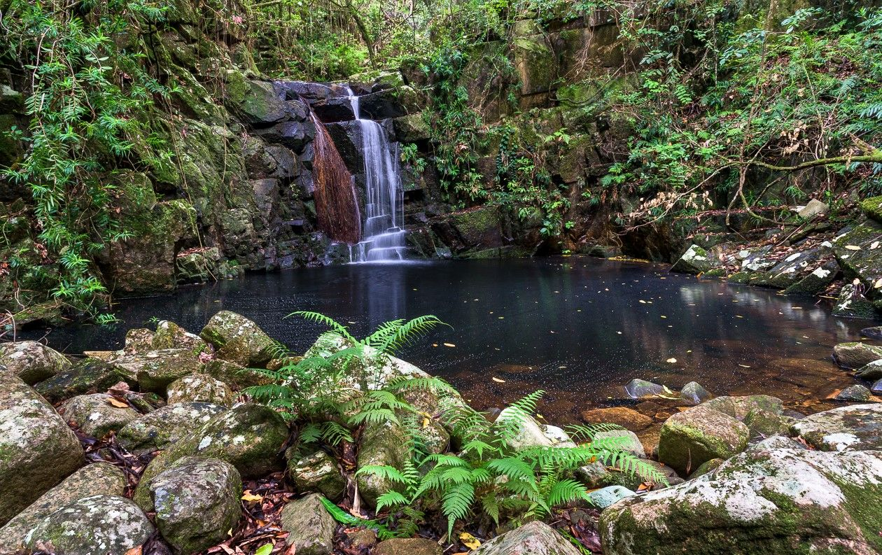 BlueGum Creek Circuit (Triple Falls and Old Wolfram Mines)
