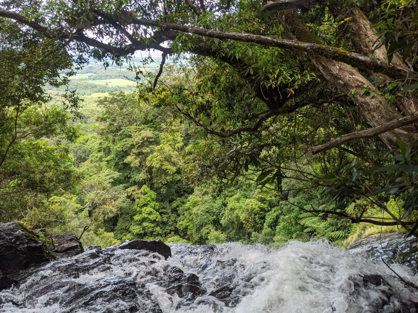 Canyoning around Cairns, Far North Queensland