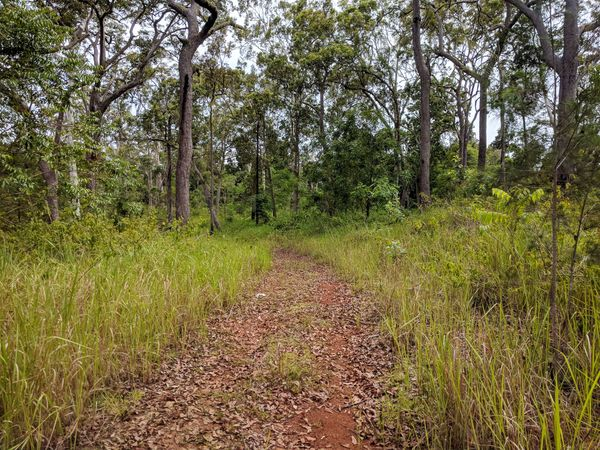 Jacobsen Track - Hidden Valley to the Bruce Highway