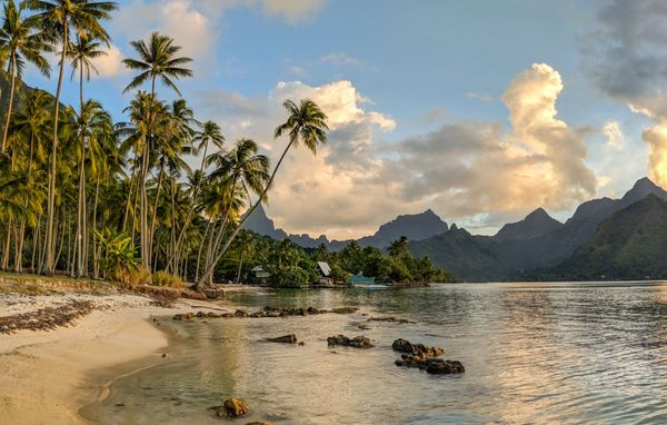 What to do on Mo'orea Island, French Polynesia